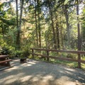 French Beach Provincial Park Campground.- French Beach Campground