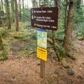 A junction a few meters into the hike. - Jocelyn Hill via Caleb Pike