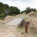 The Ancient Oaks Trail.- Ancient Oaks Trail