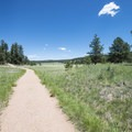 View along the Petrified Forest Loop Trail.- Petrified Forest Loop Trail