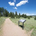 Interpretive signage along the Petrified Forest Loop Trail.- Petrified Forest Loop Trail