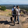 There's a short paved trail from the upper parking lot to the viewpoint at the peak.- Mount Douglas Park