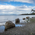 The beach here is not sandy, but it is a nice spot nonetheless.- Mount Douglas Park