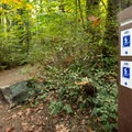 Signage at each intersection will keep you on the right trail.- Mount Douglas Park
