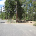 Typical sites in Fall River Campground.- Fall River Campground