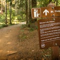 You're on the right track.- Mount Finlayson