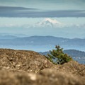 Great views of majestic Mount Baker to the east.- Mount Finlayson