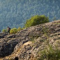 Take some time to explore the top of the mountain.- Mount Finlayson