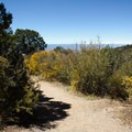 The Warner Point Nature Trail winds through canyon thickets.- Warner Point Nature Trail