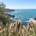 Great ocean views can be found along this hike.- Rim Trail