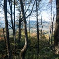 Gaps in the trees along the summit ridge.- Tennessee Rock Trail