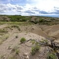 After about a mile, the landscape begins to change radically. - Bison Trail