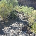 The first set of cables up Picacho Peak as trail fades.- Picacho Peak via Hunter Trail