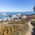 Path leading down to the ocean.- Wedding Rock Coastal Access