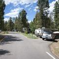 Mueller State Park Campground.- Mueller State Park Campground