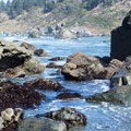 During low tides the water is shallow enough to walk through.- Palmer's Point + Coastal Access