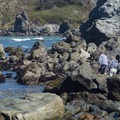 Two men search the tide pools.- Palmer's Point + Coastal Access