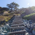 The last flight of stairs before the ocean access.- Palmer's Point + Coastal Access