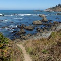 Looking down on the ocean access point from the trail.- Palmer's Point + Coastal Access
