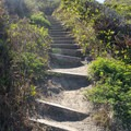 A large set of steep stairs have to be climbed on the way back.- Palmer's Point + Coastal Access