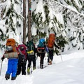 Making our way on the skier-only Hemlock Butte Trail (NF-380).- Mount Bailey Backcountry Skiing