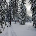 Skiing in to Mount Bailey.- Mount Bailey Backcountry Skiing