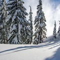 Winter in all its beauty.- Mount Bailey Backcountry Skiing