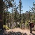 The Palisades Creek Trailhead.- Long Lake Swimming Hole via Palisades Creek Trail