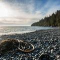 Piles of kelp and driftwood line the beach.- Mystic Beach