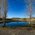 Virgin Valley Warm Springs.- Virgin Valley Warm Springs