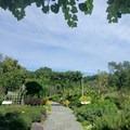 Each garden is designed with a theme in mind.- Brooklyn Botanic Garden