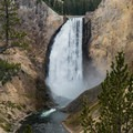 Close-up of Lower Falls in the Grand Canyon of the Yellowstone, Yellowstone National Park.- Grand Canyon of the Yellowstone