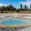 Perforated Pool.- West Thumb Geyser Basin
