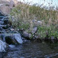 The source of the spring falls into the stone pool.- Eagleville Hot Springs