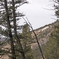 """View of Bozeman's famous """"M"""" from the Drinking Horse Trail.- Drinking Horse Mountain"""