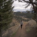 Hiking the Drinking Horse Trail.- Drinking Horse Mountain