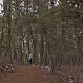 The Drinking Horse Trail.- Drinking Horse Mountain
