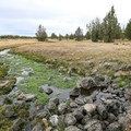 The meadows nearby host an abundance of fresh water springs.- West Valley Warm Springs