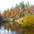 Headwaters Pool reflects the fall colors.- Headwaters Trail + PCT bridge