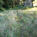 Walking along the edge of one of the meadows.- Ceremonial Rock