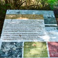 Information about the Union Bay Natural Area.- Yesler Swamp Trail