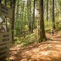 Thetis lake is a popular spot for joggers due to the wide, smooth trails and proximity to victoria.- Thetis Lake