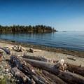 The beach at Witty's Lagoon.- Witty's Lagoon