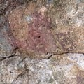 Cascadia Cave petroglyphs in the Willamette Valley.- Cascadia Cave