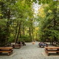 There are several large picnic areas near the parking lot.- Niagara Falls + Goldstream Trestle Bridge