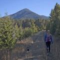 Beginning of the trail has great views of Livingston Peak.- Baldy Basin Saddle via West Baldy Basin