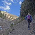 There are steep grades along the latter half of the trail to the saddle.- Baldy Basin Saddle via West Baldy Basin