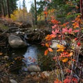 Colors with a small waterfall along the creek.- Galena Creek Trail
