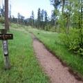 Near the Trail #9 Trailhead at Willow Creek Horse Camp.- Black Elk Peak via Willow Creek