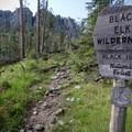 Entering the Black Elk Wilderness en route to the summit.- Black Elk Peak via Willow Creek
